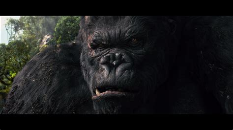King Kong (2005) 4K UHD Review - DoBlu